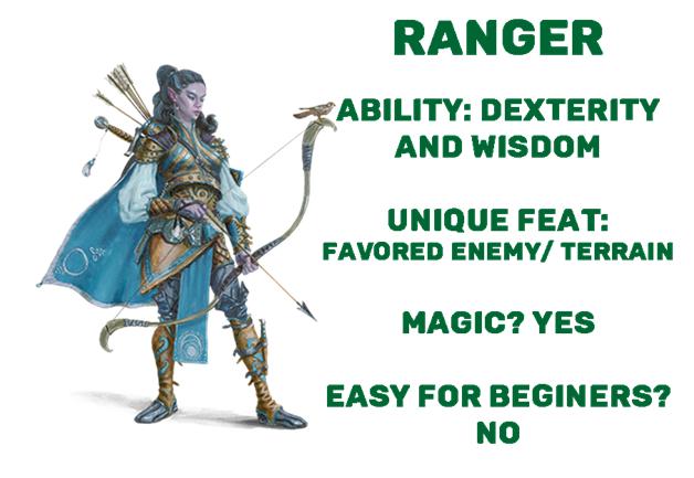 D&D dnd ranger class